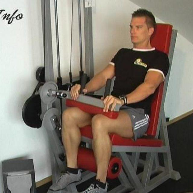 Upogib kolena sede